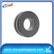 neodymium n50 magnets/ring neodymium magnet