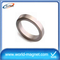 Large Ring Neodymium Rare Earth Monopole Magnet